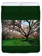 Apple Orchard, Co Armagh, Ireland Duvet Cover
