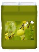 Apple Taste Of Summer Duvet Cover