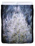 Aspen Lace Duvet Cover