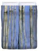 Aspen Poplar Trees Reflected In Spring Duvet Cover