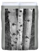 Aspen Trees Duvet Cover