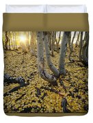 Aspen Trees Stand Above A Carpet Duvet Cover