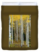 Aspen Trunks Duvet Cover