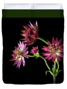 Astrantia Duvet Cover