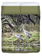 Australian Cranes At The Billabong Duvet Cover