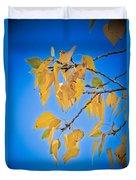 Autumn Aspen Leaves And Blue Sky Duvet Cover