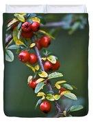 Autumn Berries Duvet Cover