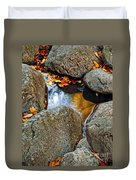 Autumn Colors Reflected In Pool Of Water Duvet Cover