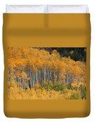Autumn Curtain Duvet Cover