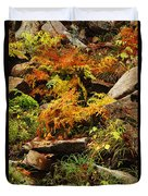 Autumn Ferns On Pickle Creek At Hawn State Park Duvet Cover