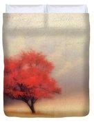Autumn Fog Duvet Cover by Darren Fisher