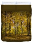 Autumn Forest Scene In West Michigan No.1140 Duvet Cover