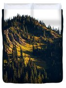 Autumn In A High Mountain Meadow Duvet Cover