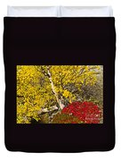 Autumn In Finland Duvet Cover