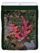 Autumn Leaf Art IIi Duvet Cover