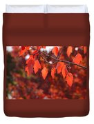 Autumn Leaves In Medford Duvet Cover