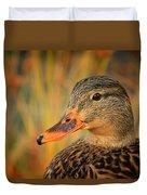 Autumn Mallard Duvet Cover