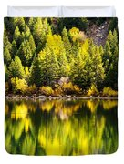 Autumn Reflection In Georgetown Lake Colorado Duvet Cover