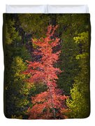 Autumn Scene Of Colorful Red Tree Along The Little Manistee River In Michigan No. 0902 Duvet Cover