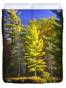 Autumn Scene Of Colorful Trees On The Little Manistee River In Michigan No. 0855 Duvet Cover