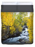 Autumn Stream V Duvet Cover