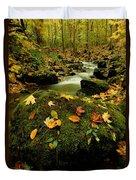 Autumn View Shows Fallen Leaves Duvet Cover
