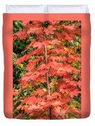 Autumnal Acer Duvet Cover