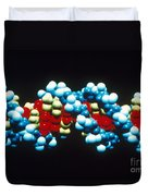 B-dna Molecular Model Duvet Cover by Science Source