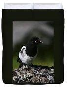 Baby Blackbilled Magpie Duvet Cover