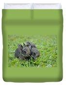 Baby Bunnies Duvet Cover