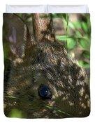 Baby Eastern Cottontail Rabbit Dmam011 Duvet Cover