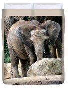 Baby Elephant Duvet Cover
