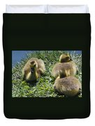 Baby Geese Duvet Cover