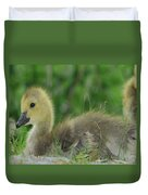 Baby Goose Takes A Break Duvet Cover