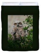 Baby Great Horned Owl Duvet Cover