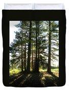 Back Lit Trees Duvet Cover