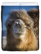 Bactrian Camel Camelus Bactrianus Duvet Cover
