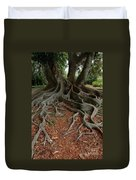 Banyan Tree And Roots In Sarasota Florida Duvet Cover