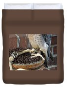 Barbary Falcon Feet Duvet Cover