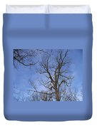 Bare Trees With Blue Sky Duvet Cover