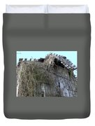 Barn From Below Duvet Cover