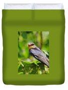Barn Swallow In Sunlight Duvet Cover