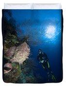 Barrel Sponge And Diver, Belize Duvet Cover