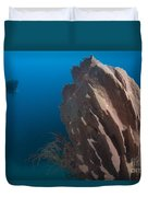 Barrel Sponge And Diver, Papua New Duvet Cover