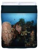 Barrel Sponge On Liberty Wreck, Bali Duvet Cover