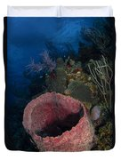 Barrel Sponge Seascape, Belize Duvet Cover