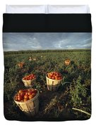 Baskets Of Fresh Tomatoes In A Field Duvet Cover