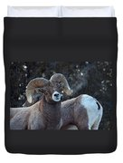 Battle Weary Duvet Cover