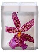 Beallara Marfitch - Howard's Dream - Orchid Duvet Cover