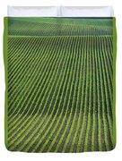Bean Field, Holland, Manitoba Duvet Cover
